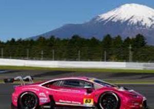 """عرض سيارة السباق """"لامبورجيني"""" هوراكان جي تي 3 وردية للبيع بالولايات المتحدة Lamborghini Huracan GT3"""