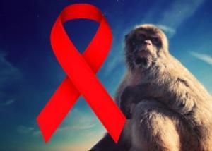 العلماء يقتربون بشكل لافت من الشفاء لفيروس الإيدز