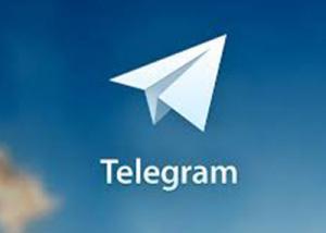 """تطبيق """" تيليجرام """" 50 مليون مستخدم ومليار رسالة يومياً"""