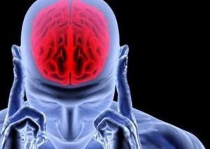 زرع خلايا عصبية في المخ بدلا من التالفة أصبح حقيقة