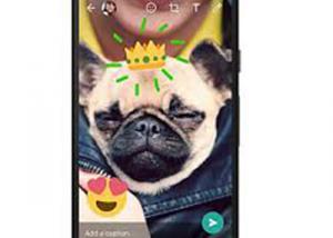 تطبيق WhatsApp يحصل على دعم الصور المتحركة GIF على منصة iOS